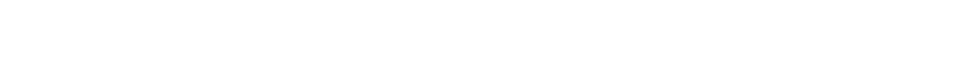 Logo Schriftzug Schachreiter
